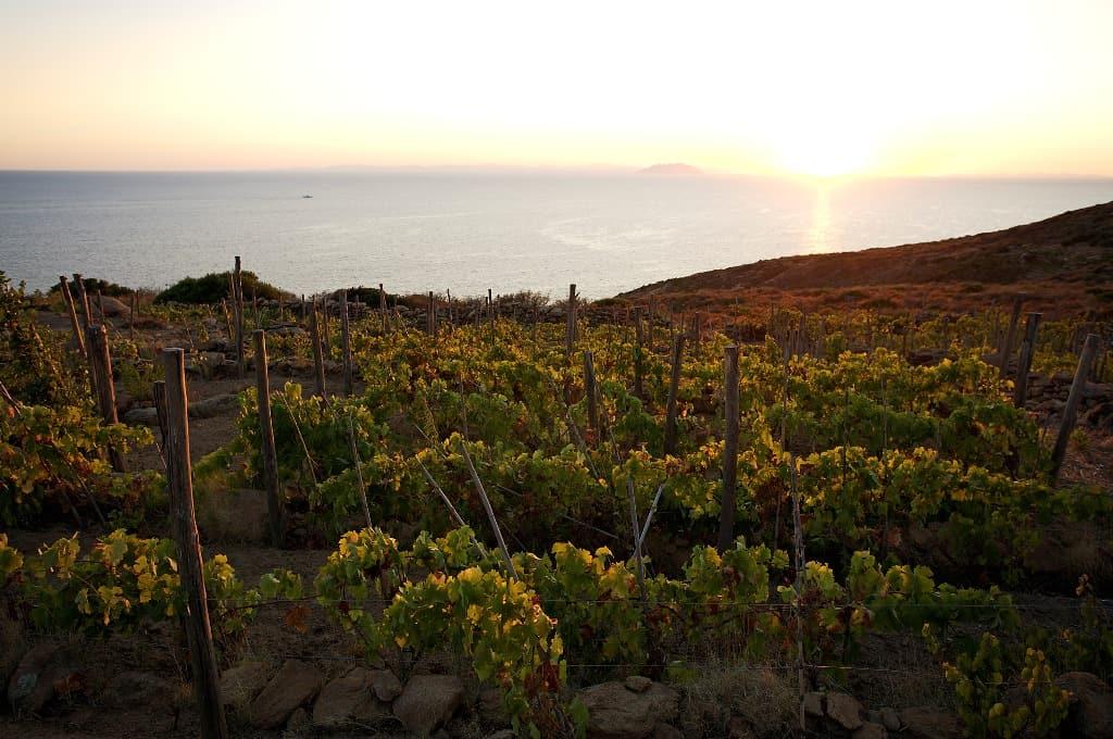 Montecristo e la Corsica1